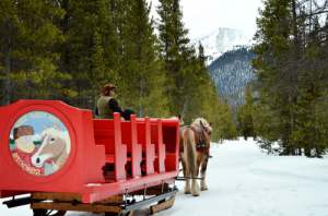 Winter Scenic Sleigh Rides in Breckenridge Colorado