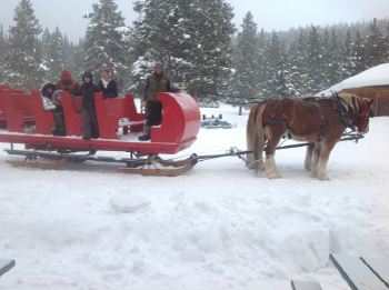 Scenic Sleigh Rides in Colorado